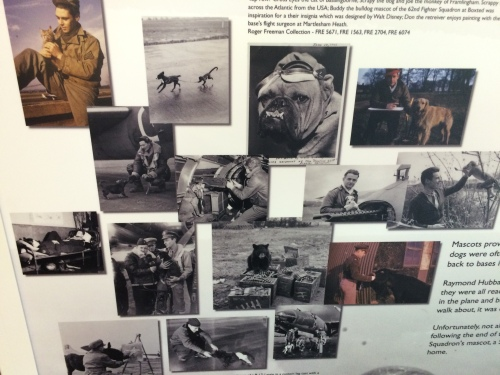 My favorite panel in the lobby was this one, about the various animals, pets and mascots adopted by U.S. air men during the war. Can you find the black bear, monkey, and donkey?